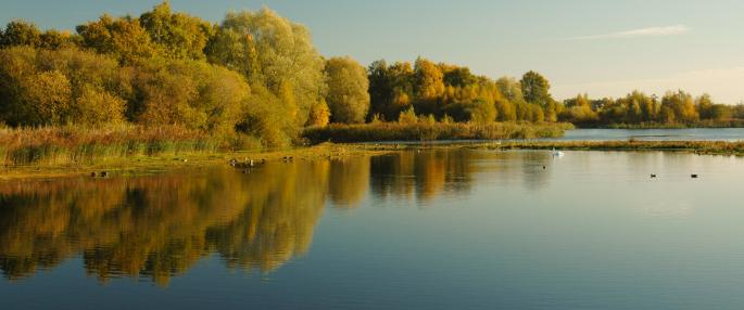 Whisby Nature Park included in a new oil and gas licence block. Picture by The Wildlfe Trusts