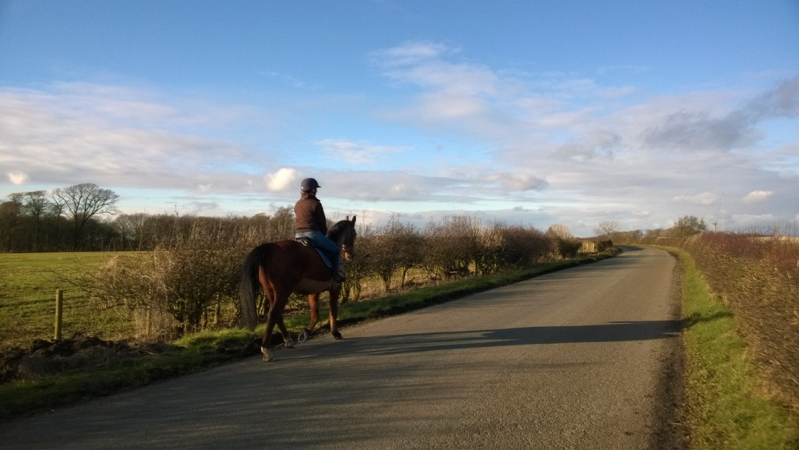 Horse rider on Roseacre Road