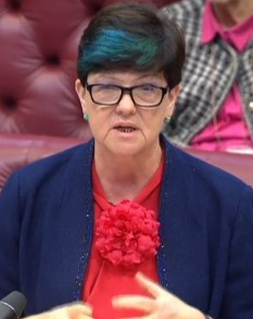 baroness-neville-rolfe-160906
