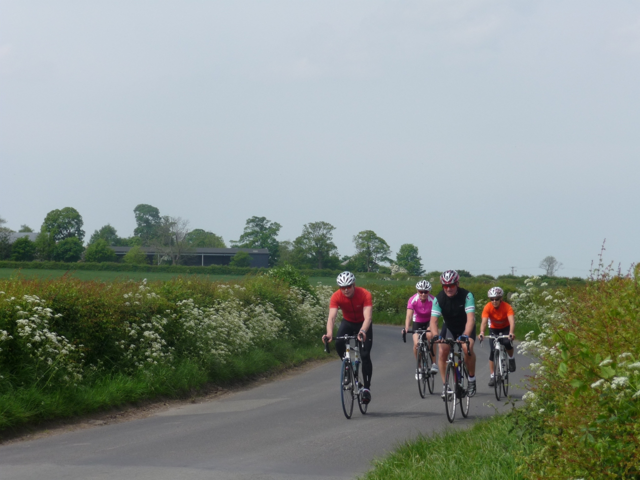 cyclists-large-group
