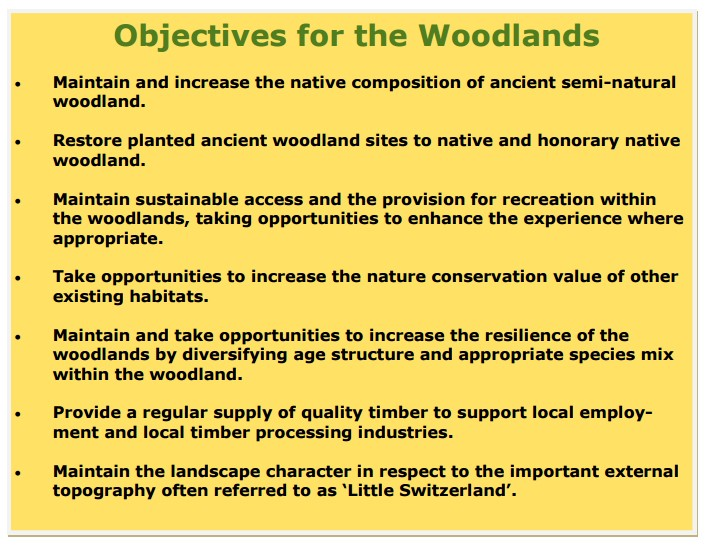 forestry-commission-objectives-for-bury-hill-woods