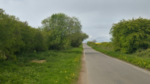 Bramleymoor Lane 170426 DoD