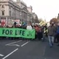 181117 London protest Eddie Thornton6