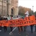 181117 London protest Eddie Thornton7