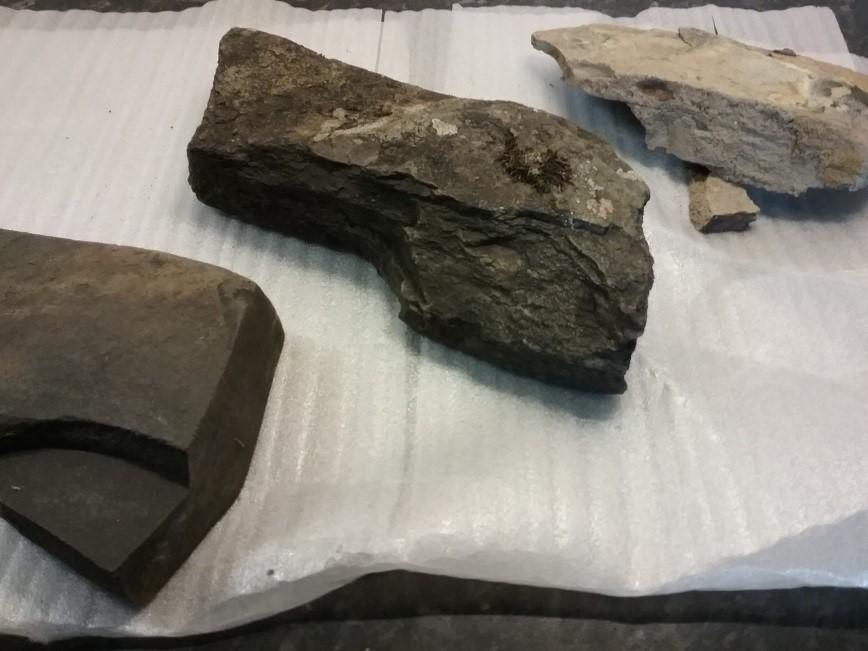 Shale rocks Muriel