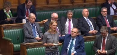 Wera Hobhouse, 28 March 2019. Photo: Parliament TV