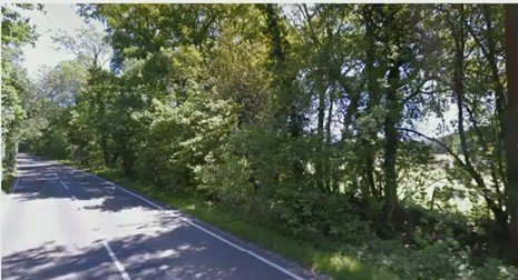Proposed entrance off Dunsfold Road. Photo: from Waverley Borough Council webcast