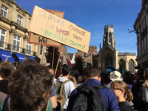 Climate rally in York, 20 September 2019. Photo: Caroline Davis